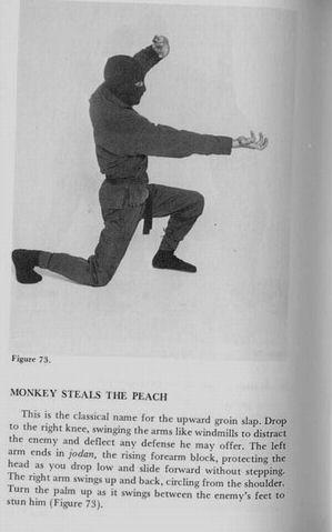 El mono roba el melocotón