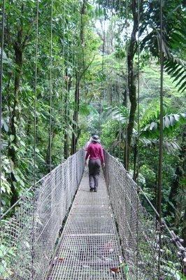 Puentes colgantes en costa rica