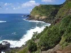 20071107_pitcairn3.jpg