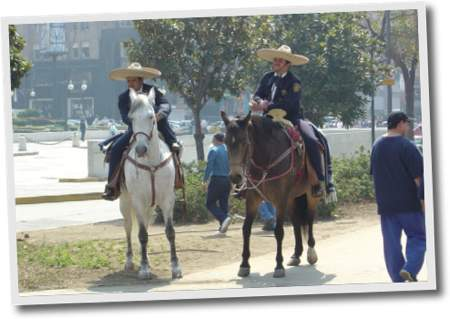 policias en mexico capital