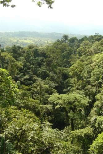 20090912_selva8