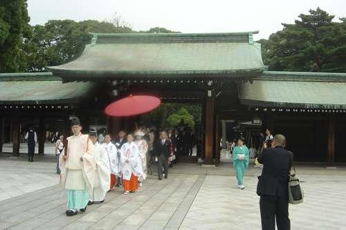 20091108_boda_japon10