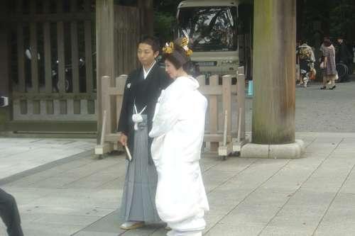 20091108_boda_japon12