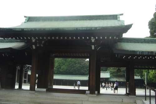 20091108_boda_japon5