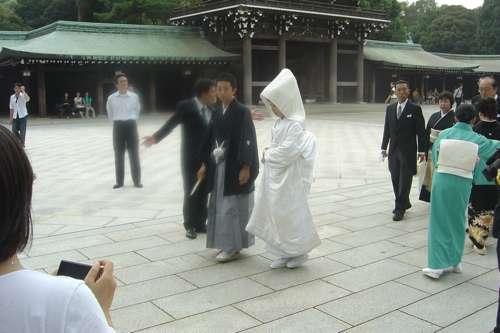 20091108_boda_japon6