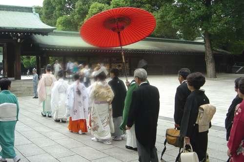 20091108_boda_japon8