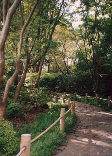sendero en el japanese tea garden san francisco © somosviajeros