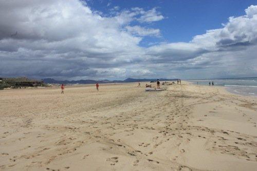 Playa de Sotavento en Fuerteventura.
