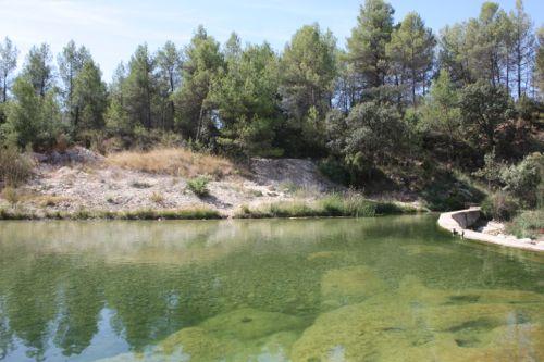 Aguas cristalinas en el Assut de Lledó