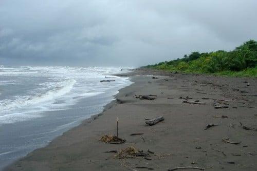 playa de Tortuguero (Costa Rica)