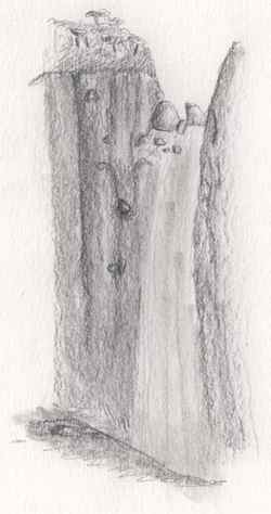 Dibujo a lápiz de una cascada