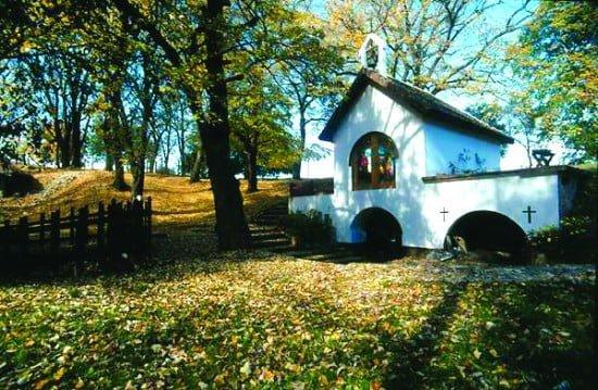 Bosques y monasterios en Fruska gora