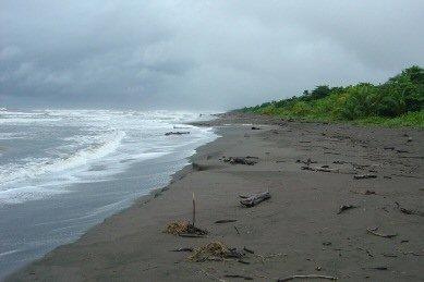 playas_tortuguero_210106