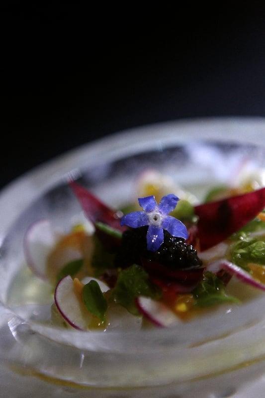 Ceviche en plato de hielo con caviar restaurante caelis