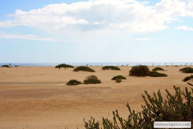 playas en norte corralejo