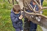 Recorrido de dos semanas por Escocia con niños y caravana