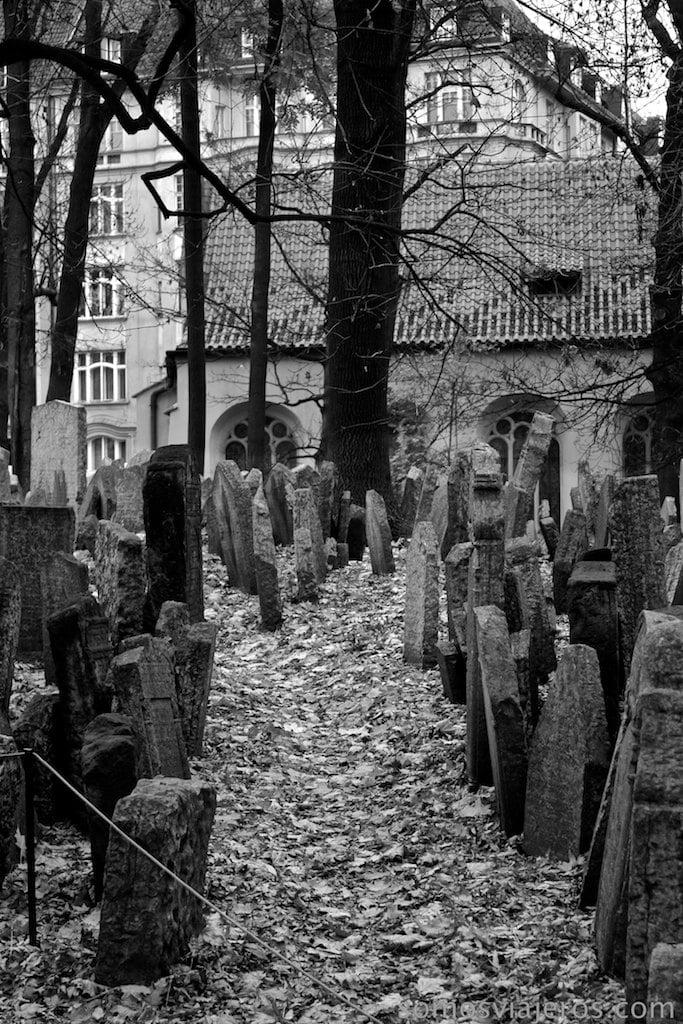 camino de hojas en el cementerio judio de Praga