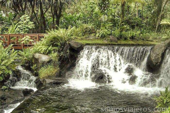 Cascadas y pasarelas en Costa Rica en medio de la selva