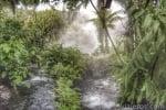 Viaje a Costa Rica. Volcán arenal y el mejor Spa del mundo