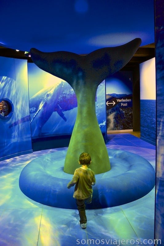 museo marítimo de amsterdam con niños14