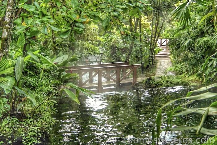 puentes entre la selva en aguas termales tabacón