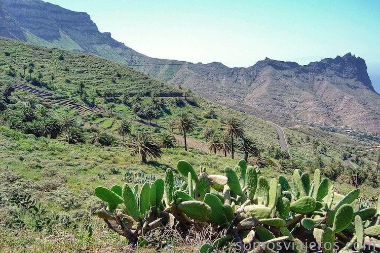 vistas de La Gomera