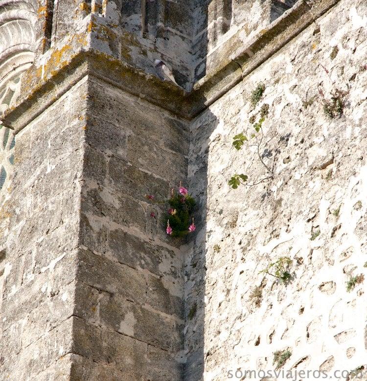 flores en la iglesia vejer