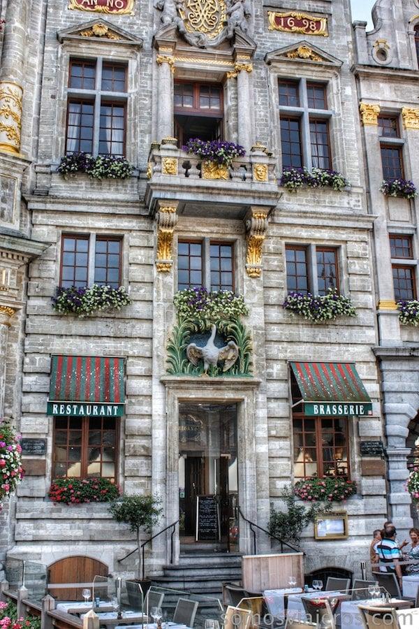 grand place bruselas El Cisne