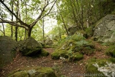 bosques en el lago katrine