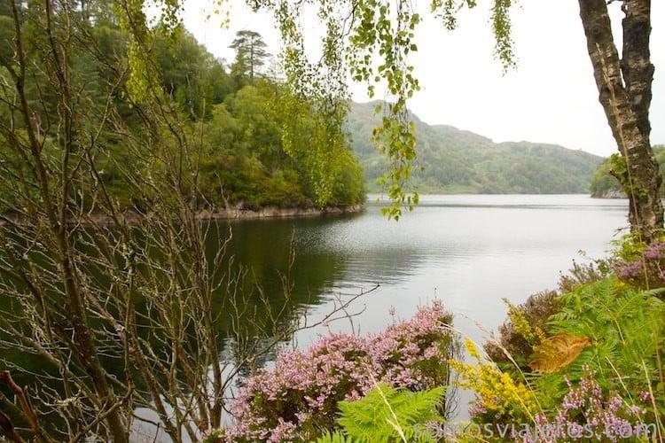 foto con flores del lago katrine