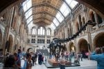 museo historia natural Londres