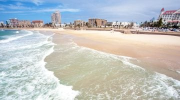 Viajar a Sudáfrica: Port Elizabeth