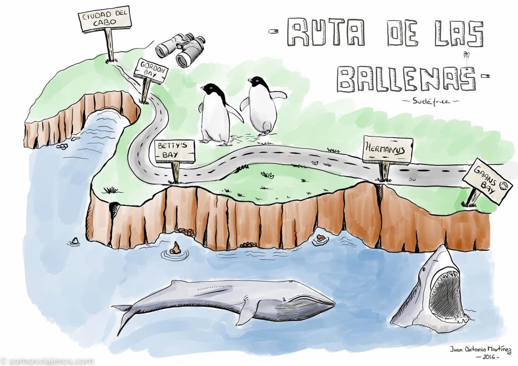 ruta-de-las-ballenas-sudafrica-1