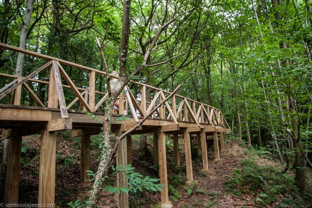 pasarela de madera en monte corona