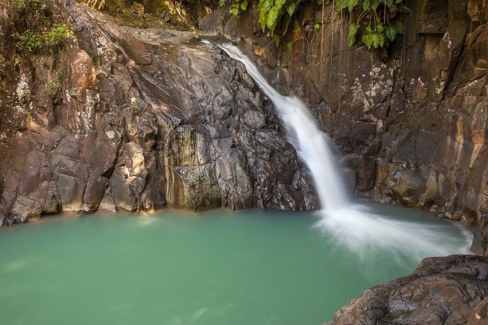 Terre-Basse-parque natural de la isla de Guadalupe