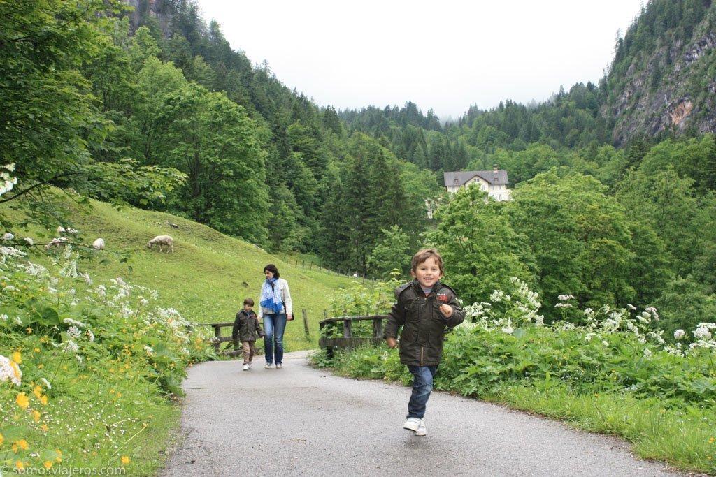 ruta por hallstatt entre el bosque