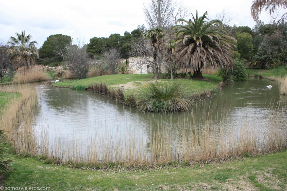 zonas de agua en la reserva africana de sigean