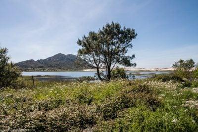 Vistas del lago de Louro