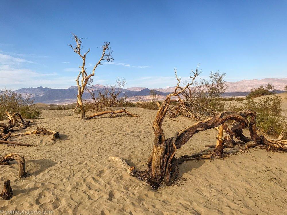consejos para viajar a Estados Unidos. Los parques nacionales. Death Valley