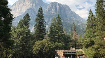 Información sobre Yosemite para preparar la visita
