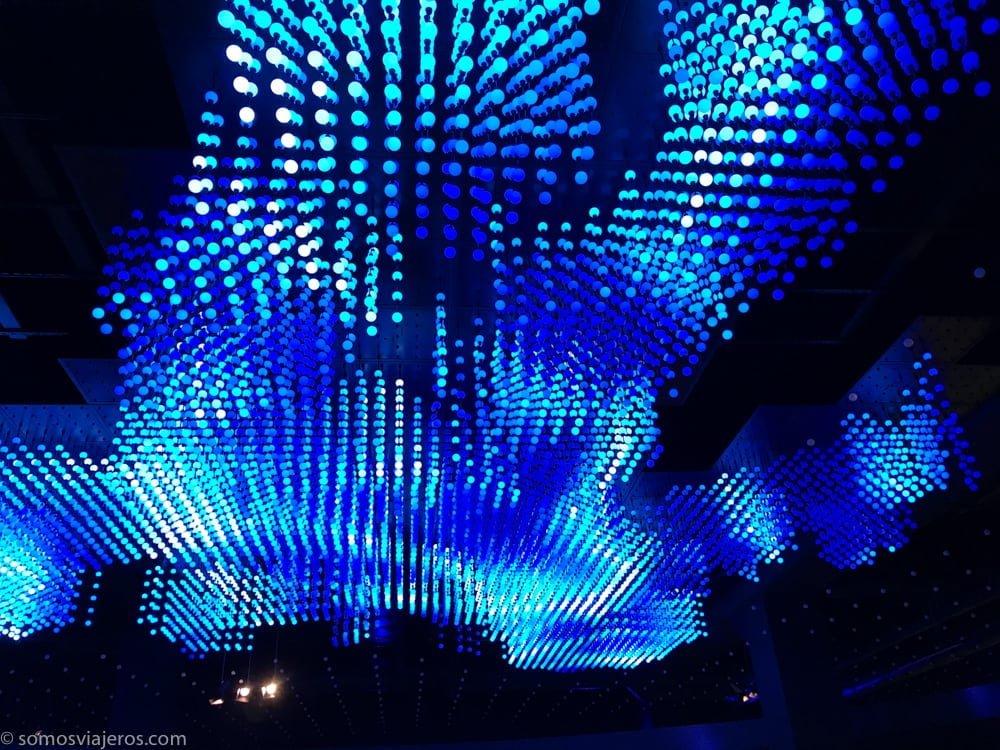 luces azules en el techo del parlamentarium
