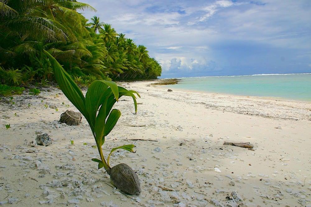 isla polinesia