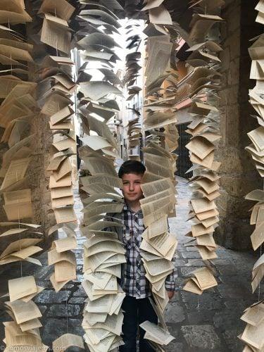 david entre hojas de libros