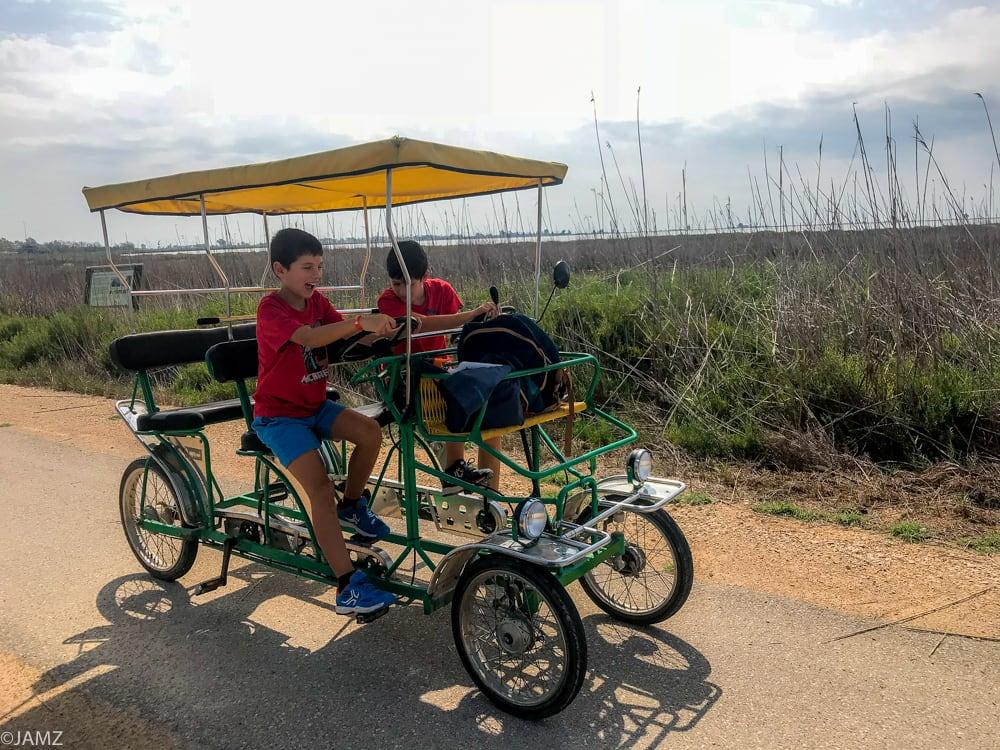 bicicar en el delta
