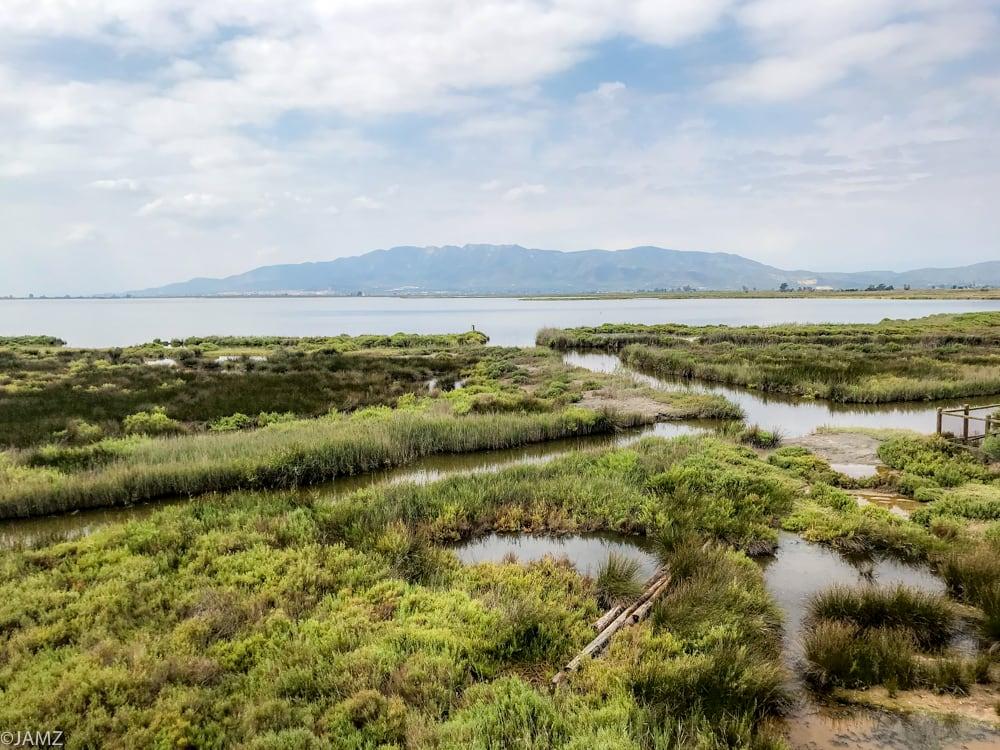 vista de la laguna encanyissada