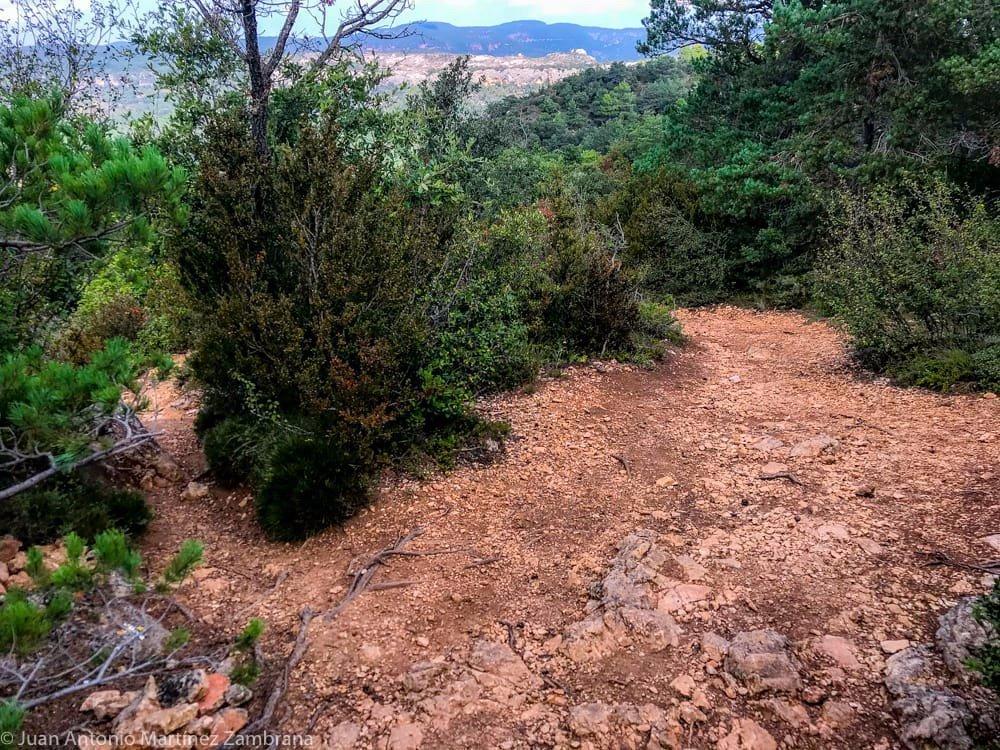 el camino se aclara cerca del Avenc de La Febró