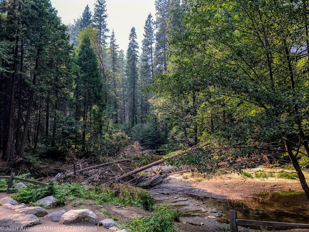sendero cerca del rio en las Yosemite Falls