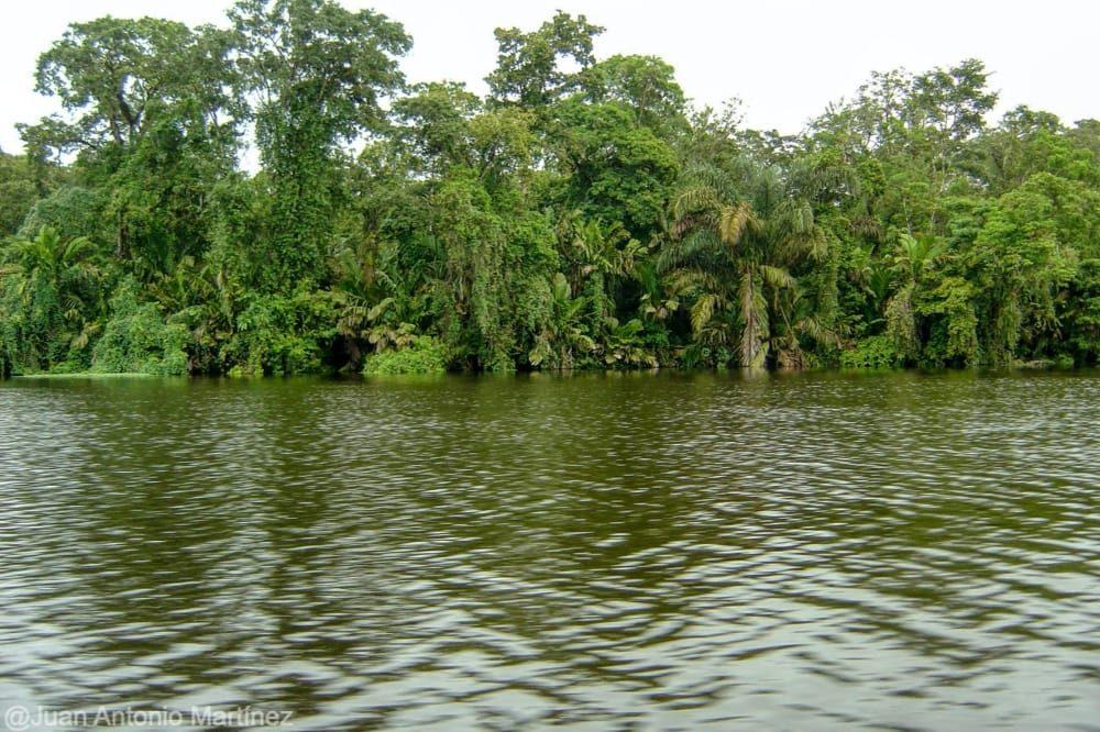Tortuguero y sus canales en la ruta por Costa Rica